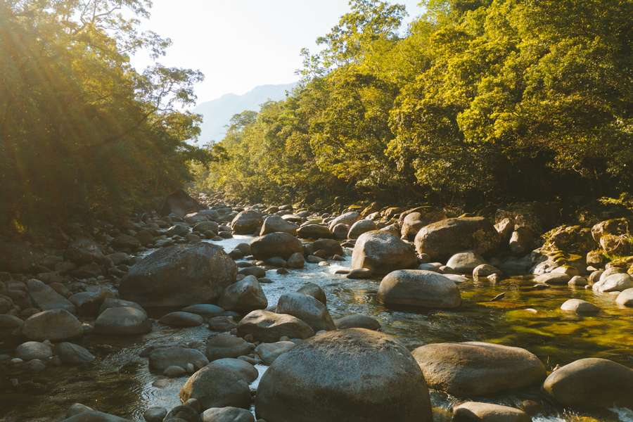 Mossman gorge waterway with large smooth boulders