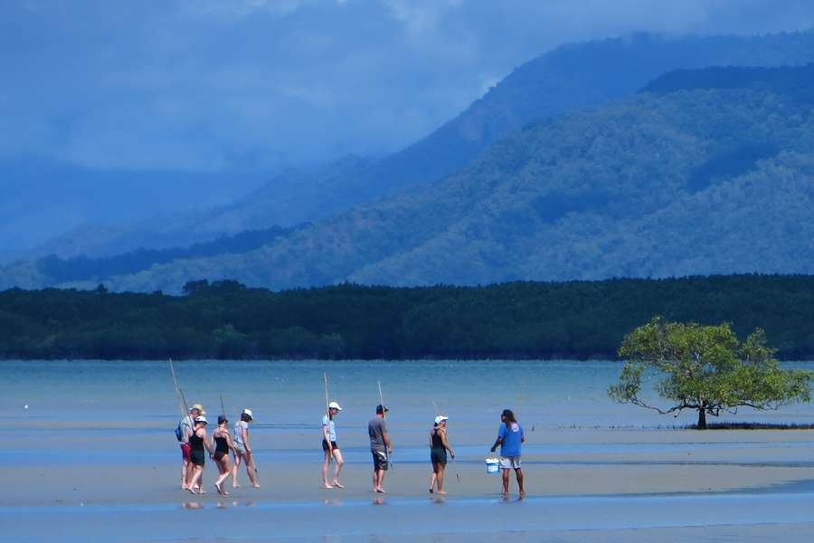 a small group of people at Cooya beach walking across the mudflats with rolling hills in the background