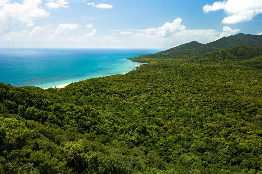 Arial view of coastline and rainforest in Far North Queensland